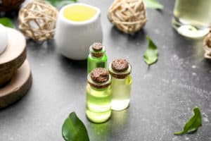 Top 10 proven benefits and uses of tea tree oil