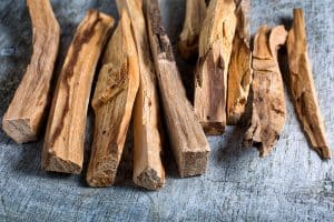 wellnessaromas-aromatherapy-essential-oil_palo-santo-benefits-uses