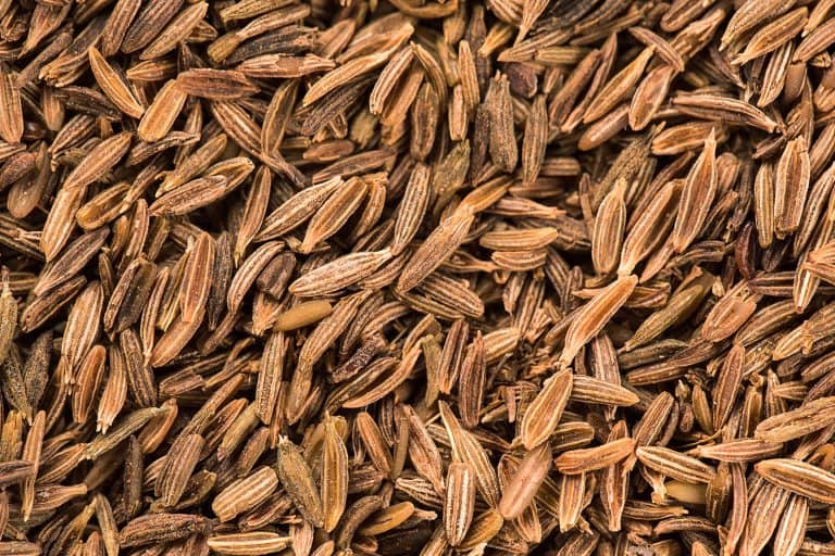 Cumin Essential Oil Benefits and Uses